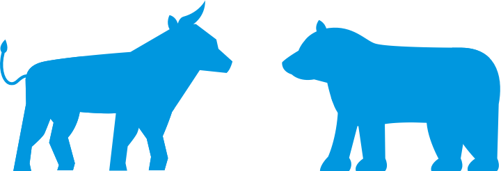 Aktien für Anfänger - Bulle und Bär